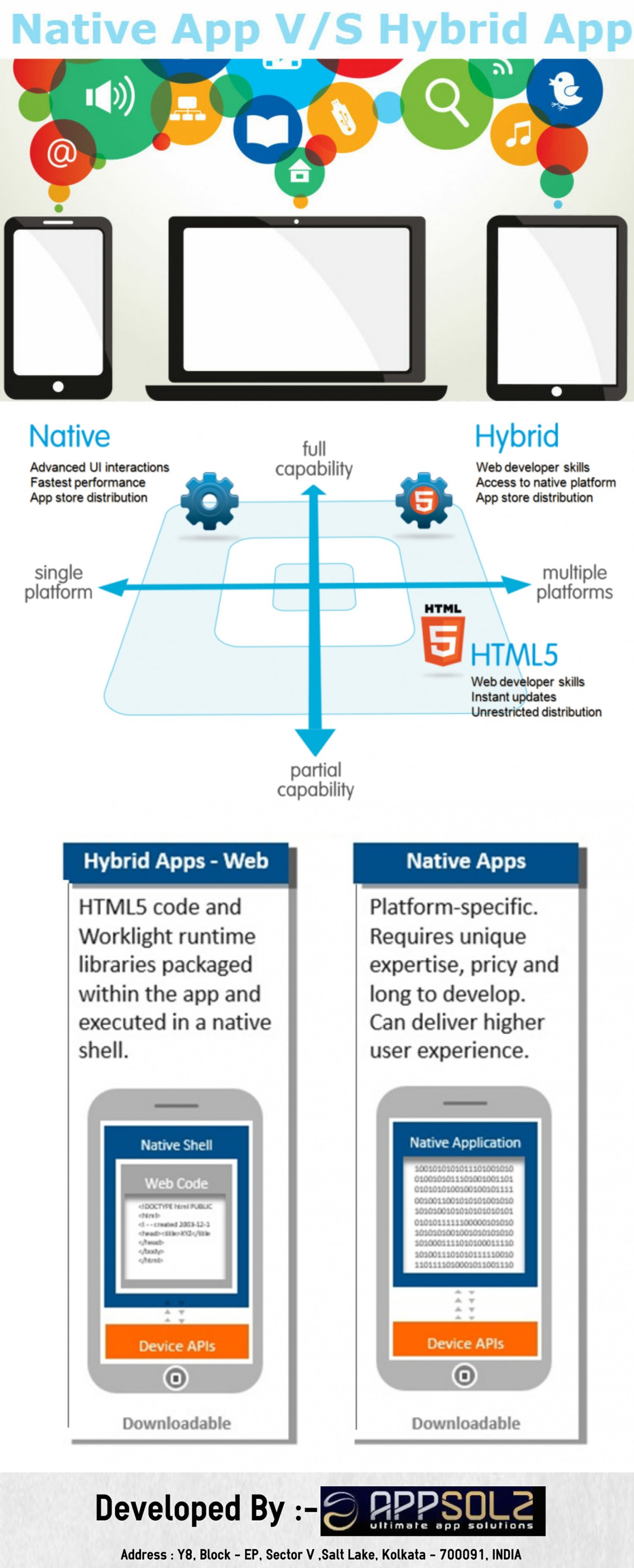 Native App Vs Hybrid App Infographic
