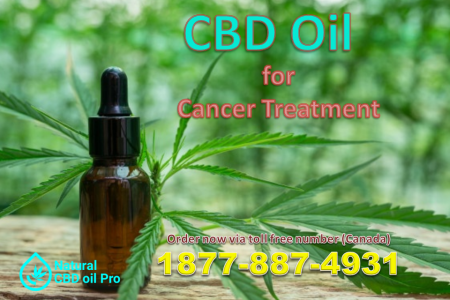 Natural CBD Oil Pro - CBD Oil for Cancer Treatment Infographic
