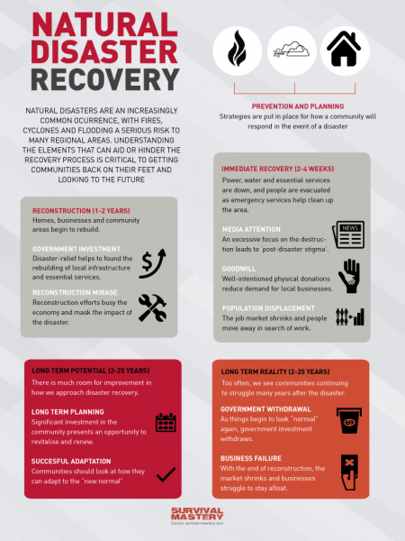 Natural Disaster Recovery Infographic Infographic