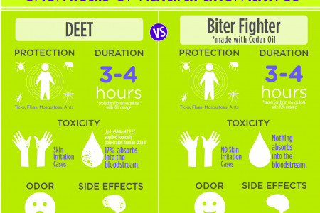 Natural Mosquito Repellent Infographic