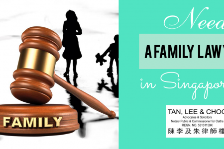 Need a family lawyer in Singapore, Hire at tan lee and choo Infographic
