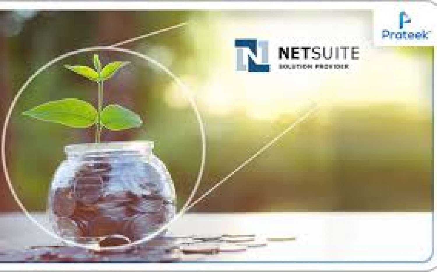 NetSuite Implementation Service Infographic
