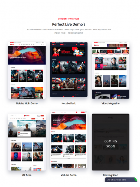 Netube - Viral Video Blog / Magazine WordPress Theme Infographic