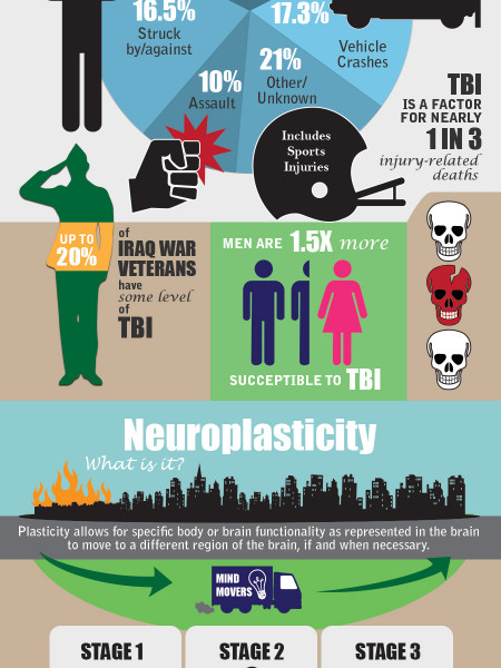 Neuroplasticity: The Remarkable Ability of Our Brain to Adapt Infographic