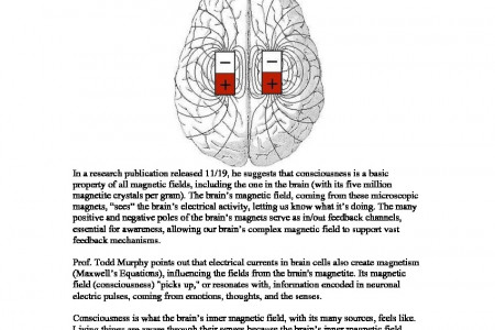 New Theory on the Physics of Consciousness Says:  It's the Magnetic fields in the Brain Infographic