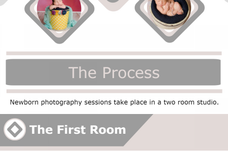 Newborn Photography Infographic