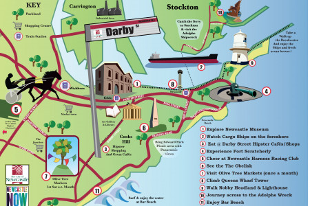 Newcastle map Infographic