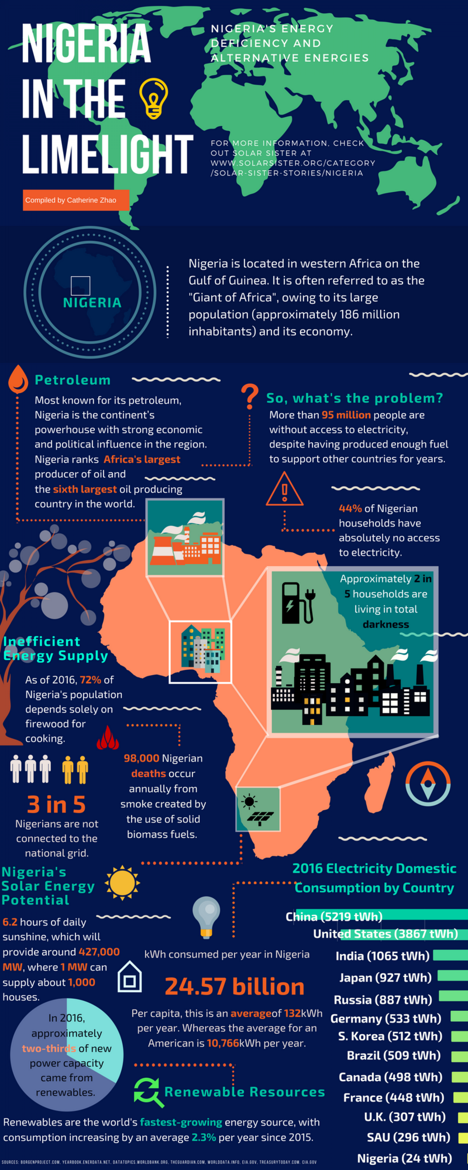 Nigeria in the Limelight Infographic
