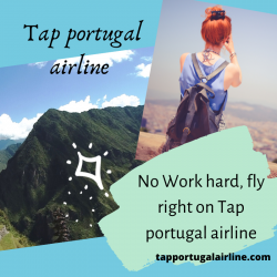 No Work hard, fly right on Tap portugal airline | Visual.ly