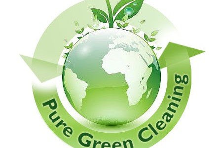 Non-Toxic And Environment Friendly Green Cleaning Service Infographic