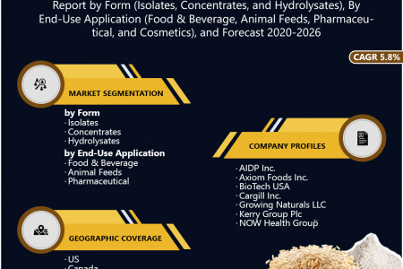 North America Rice Protein Market Research and Forecast 2020-2026 Infographic
