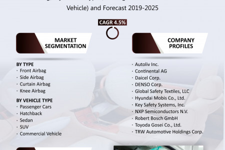North American Airbag Market Size, Share, Growth, Research and Forecast 2019-2025 Infographic
