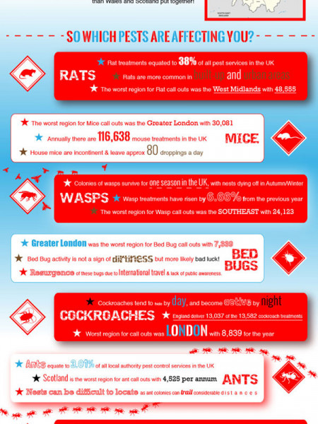 Pest Control Uk: Facts & Figures Infographic