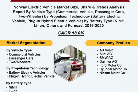 Norway Electric Vehicle Market: Analysis Report, Share, Trends and Overview 2019-2025 Infographic