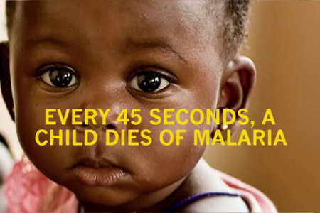 Novartis Malaria Initiative Infographic