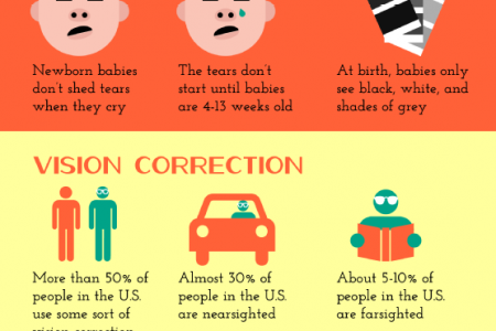 Now See This: Fun Facts about the Eyes Infographic