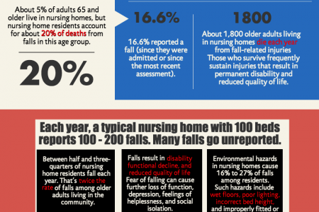 Nursing Home Abuse and Neglect Infographic