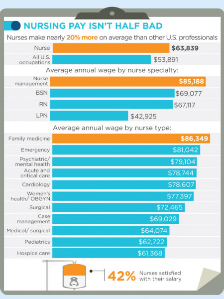 Nursing USA The State of America's Nursing Industry Infographic