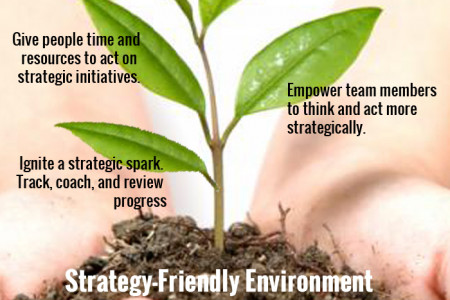 Nurturing The Seeds Of Strategy Infographic