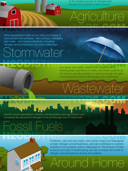 Nutrient Pollution in Water Infographic