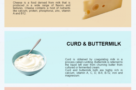 Nutritional Contents of Different Dairy Products Infographic