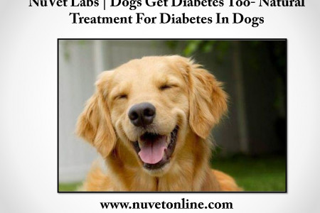 NuVet Labs | Dogs Get Diabetes Too- Natural Treatment For Diabetes In Dogs Infographic