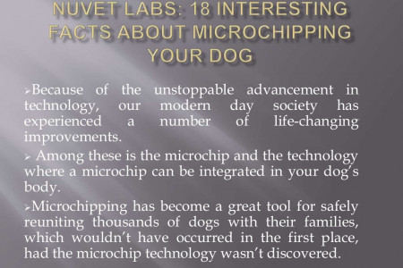 NuVet Labs: 18 Interesting Facts about Microchipping your Dog Infographic