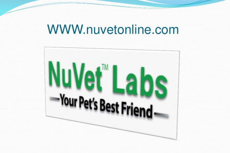 NuVet Labs Part 2 - 5 More Tips for Going Green With Your Dog Infographic