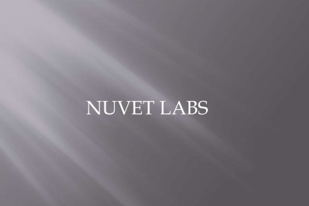NuVet Labs Reviews : Holiday Plants to Keep Away from Your Pets Infographic