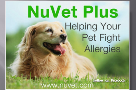 Nuvet Plus Helping Your Pet Fight Allergies Infographic