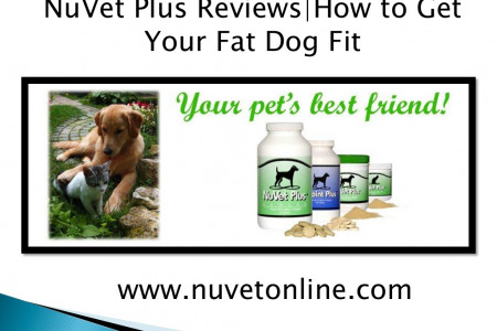 NuVet Plus Reviews | How to Get Your Fat Dog Fit Infographic
