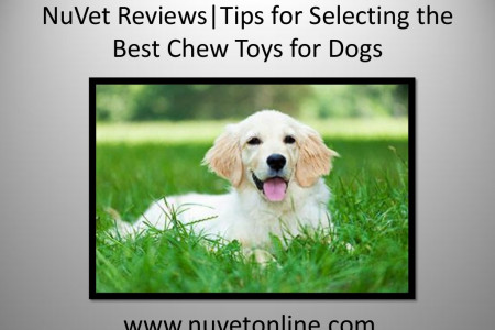 NuVet Reviews | Tips for Selecting the Best Chew Toys for Dogs Infographic