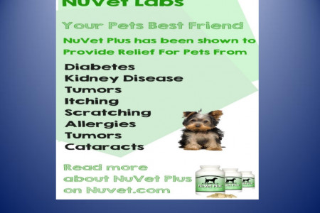 Nuvet reviews how can nuvet plus help with my dog's seizures Infographic