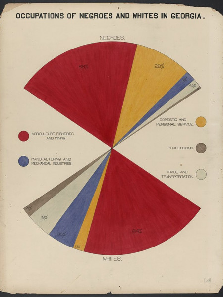 Occupations of Negroes and Whites in Georgia  Infographic