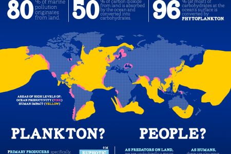Ocean Productivity & Pollution Infographic