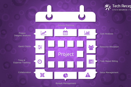 Odoo ERP Project Management System Solution Infographic TEch Receptive Infographic