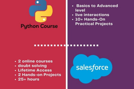 Online Courses | IT Professional Certification Course | LearnInbox Infographic