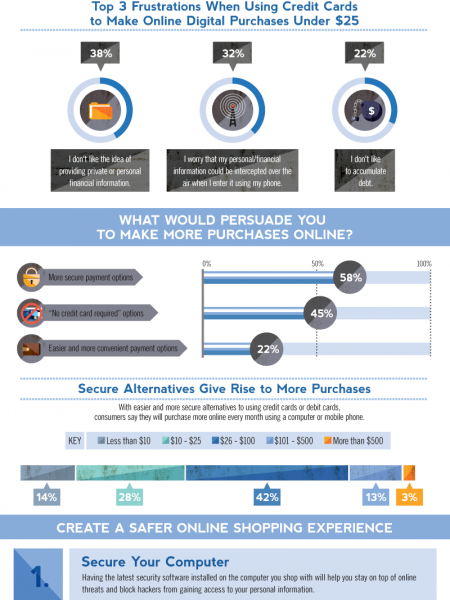 Online Payment Security Infographic