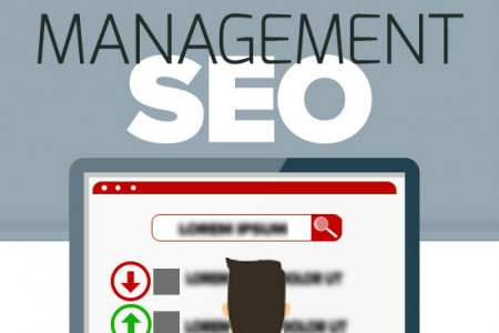 Online Reputation Management and SEO  Infographic