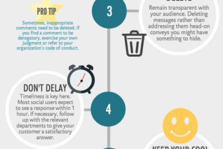 Online Reputation Management In India Infographic