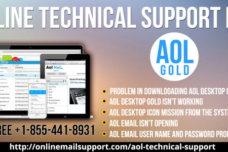 Online Technical Support for AOL Gold Infographic