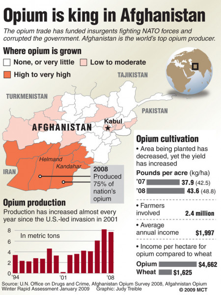 Opium is King in Afghanistan Infographic