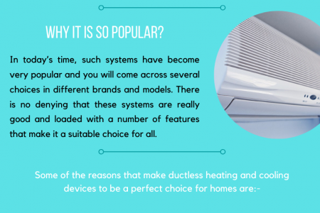 Opt For Ductless Heating and Cooling Systems Infographic