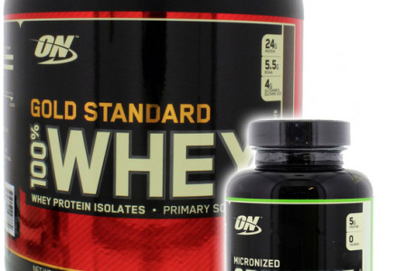 Optimum Nutrition Gold Standard 100% Whey - Double Rich Chocolate Infographic