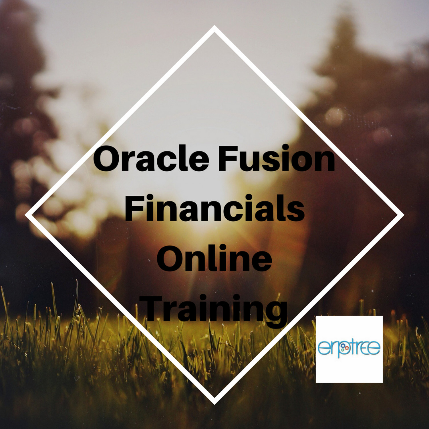 Oracle Fusion Financials Online Training Infographic