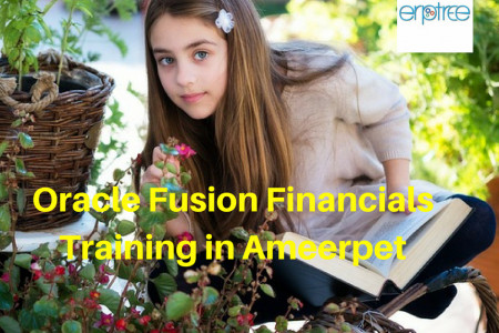 Oracle Fusion Financials Training in Ameerpet Infographic