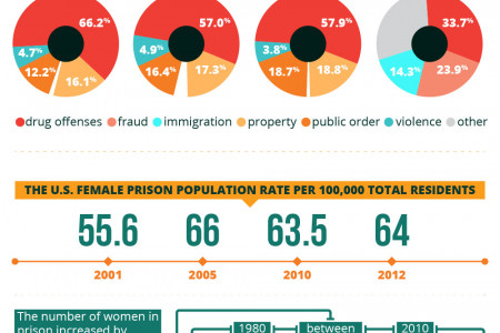 Orange Overflow: A Look at the Exploding Female Prison Population  Infographic