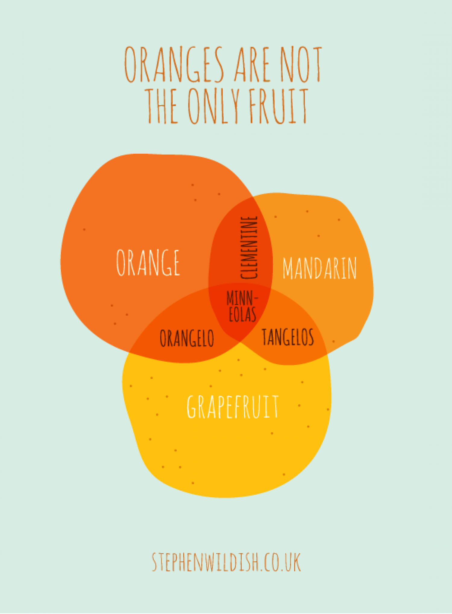 Oranges are not the only fruit Infographic