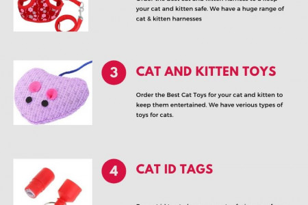 Order The  Best Cat Collars In UK Infographic