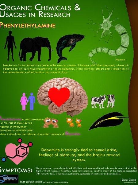 Organic Chemicals & their Usages in Research - Phenylethylamine & Dopamine Effect over the human body: Infographic